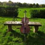 Annisa Slater - cello - String Orchestra