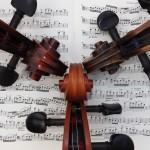 Imogen Brown - cello - String Orchestra